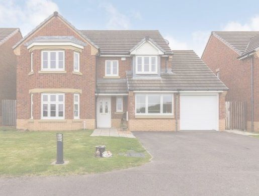Thumbnail Detached house to rent in Kestrel Avenue, Dunfermline