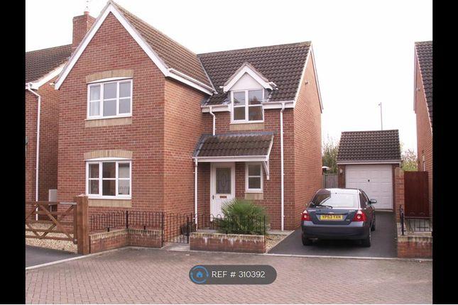 Thumbnail Detached house to rent in Cashford Gate, Taunton