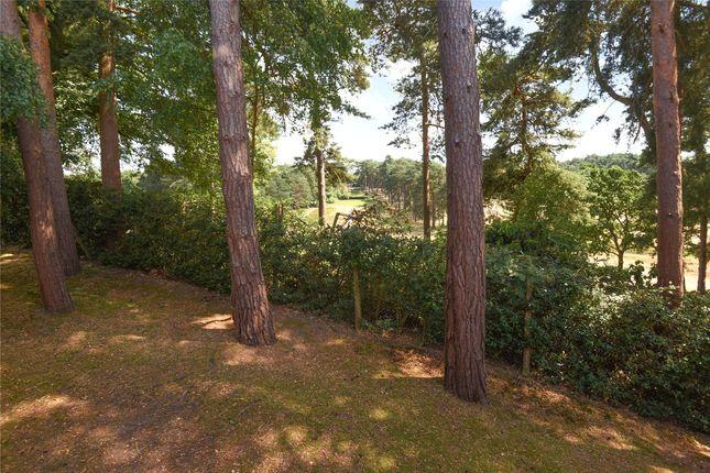 Picture No. 10 of Fairway Heights, Camberley, Surrey GU15