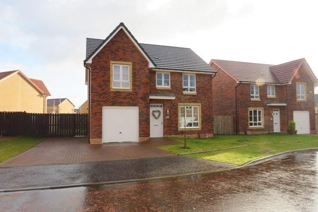 Thumbnail Detached house to rent in Cot Castle Grove, Stonehouse, Larkhall