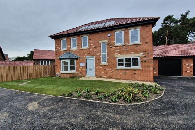 Thumbnail Detached house for sale in Lanchester Rise, Maiden Law, Lanchester, Durham