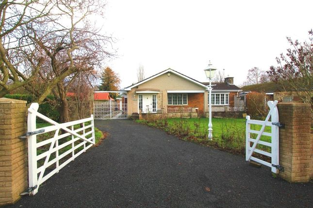 Thumbnail Bungalow for sale in Melton Gardens, Sprotbrough, Doncaster