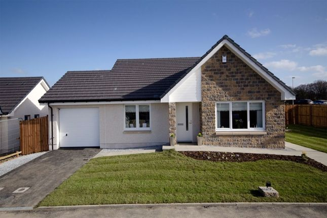 Thumbnail Bungalow for sale in Sellar Crescent, Keith