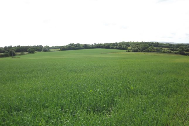 Thumbnail Land for sale in Stalkers Lane, Chiddingly