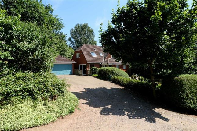 Thumbnail Detached house for sale in Redmarley Road, Newent