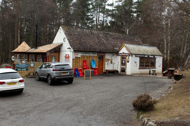 Thumbnail Leisure/hospitality to let in Pine Marten Bar, Shop, Café, Ski/Bike Hire And Accommodation, Nr Aviemore