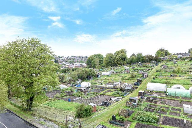 Garden of Stoney Grove, Chesham HP5