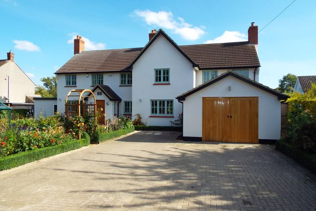Thumbnail Detached house for sale in Hinwick Road, Podington, Bedfordshire