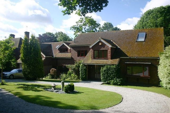 Thumbnail Detached house to rent in Pondwicks Close, St.Albans