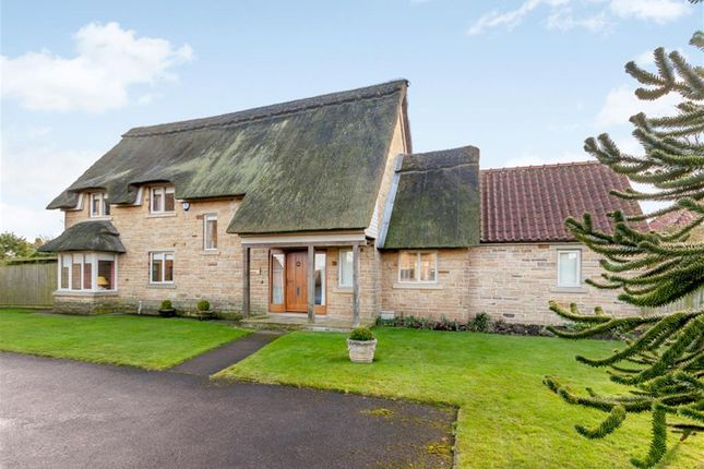 Thumbnail Detached house for sale in Roundhills Court, Scackleton, York