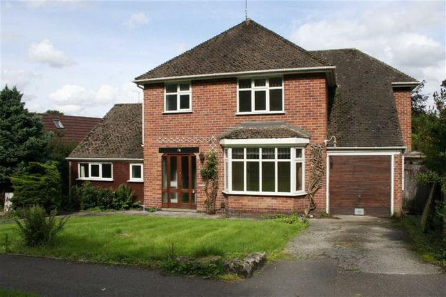 Thumbnail Detached house to rent in Main Avenue, Allestree, Derby