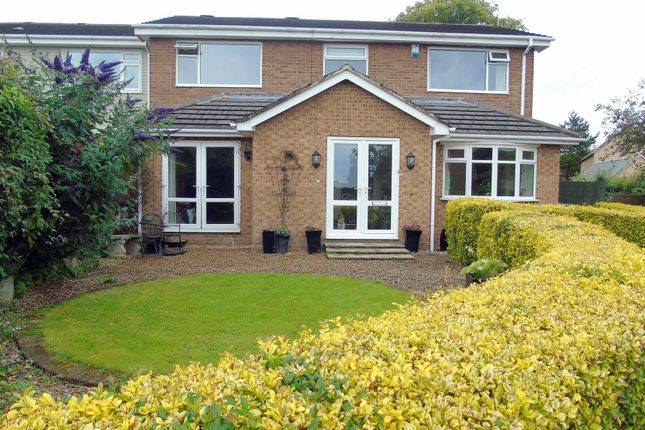 Thumbnail Detached house for sale in The Limes, Stannington, Morpeth