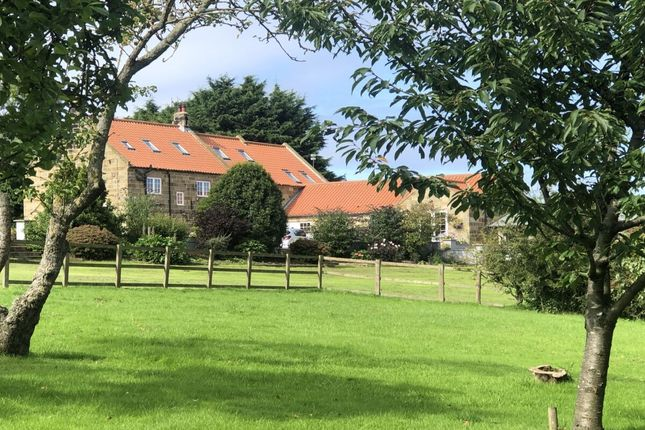Thumbnail Detached house for sale in Skelton-In-Cleveland, Saltburn-By-The-Sea
