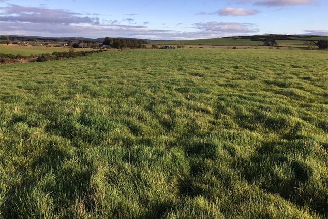 Thumbnail Land for sale in Netherley, Stonehaven