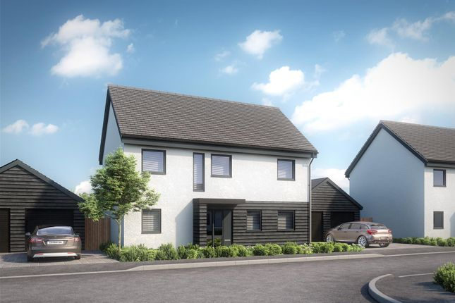Thumbnail Detached house for sale in Hamilton Close, Great Plumstead, Norwich
