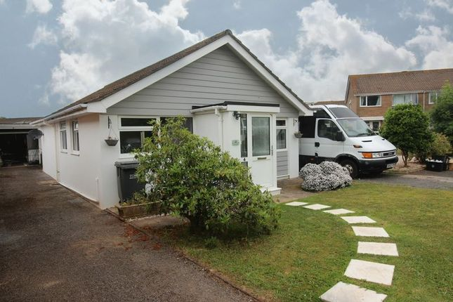 Thumbnail Detached bungalow to rent in Holwill Tor Walk, Paignton