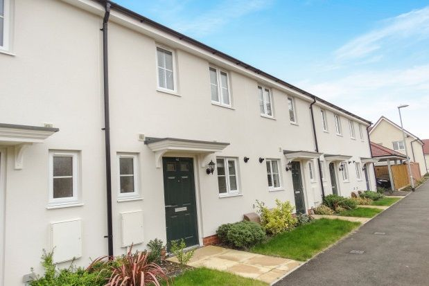Thumbnail Property to rent in Graham Brown Walk, Witham