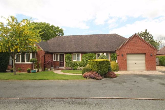 Thumbnail Detached bungalow for sale in Offas Close, Treflach, Oswestry