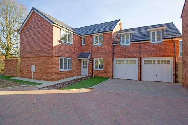 Thumbnail Detached house to rent in Hestia Place, Burgess Hill