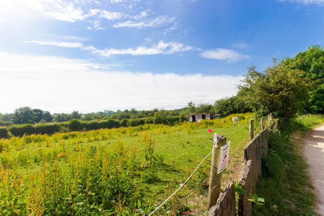 Thumbnail Equestrian property for sale in Prestolee Road, Radcliffe, Manchester