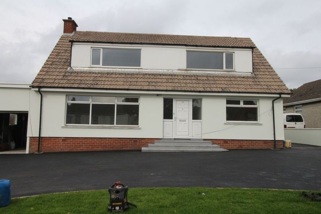 Thumbnail Bungalow to rent in North Road, Newtownards
