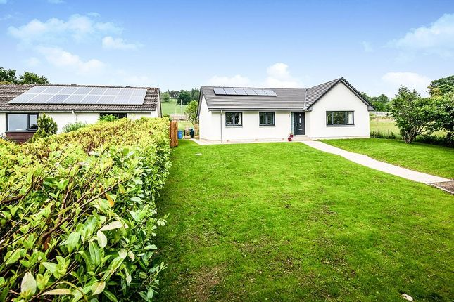 Thumbnail Bungalow for sale in Dingwall