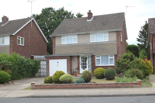 Thumbnail Detached house for sale in Scott Drive, Colchester
