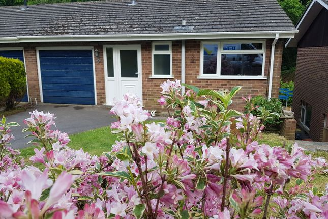 Thumbnail Semi-detached house to rent in 24 Charborough Road, Broadstone