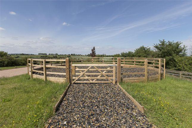 Horse Walker of Paddle Brook Barns, Moreton-In-Marsh, Gloucestershire GL56