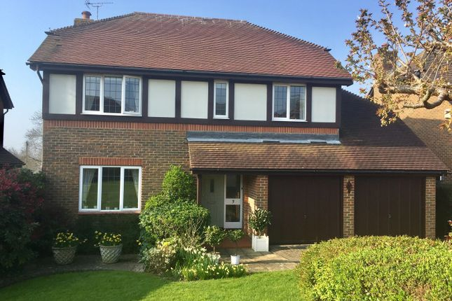 Thumbnail Detached house for sale in The Covert, Bexhill-On-Sea