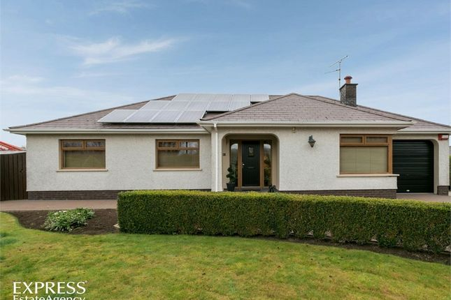 Thumbnail Detached bungalow for sale in Farrenlester Road, Coleraine, County Londonderry