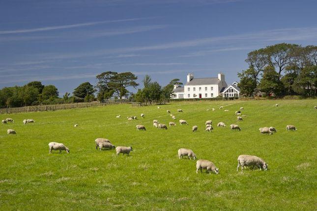 Thumbnail Detached house for sale in Berrag Farm, Sandygate