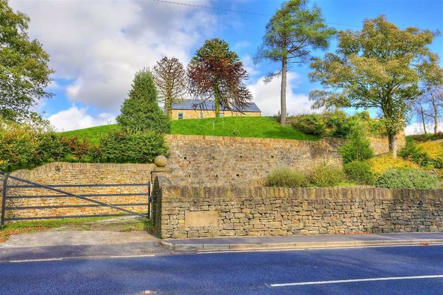 Thumbnail Detached house for sale in Hallam View, Manchester Road, Hollow Meadows