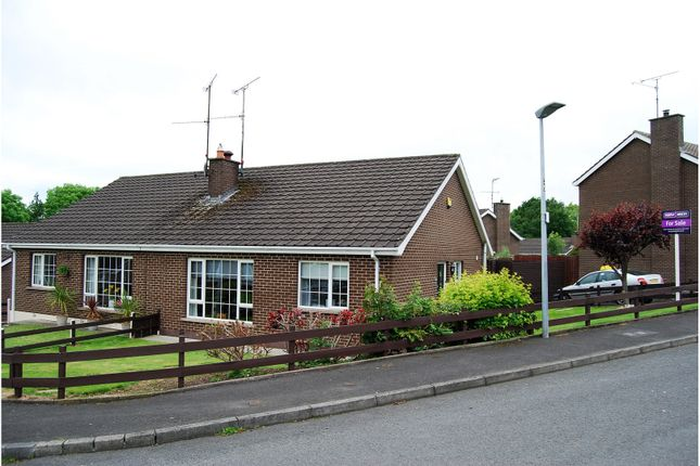 Thumbnail Bungalow for sale in Kensington Park, Portadown