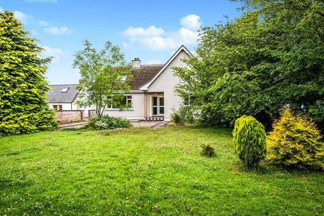 Thumbnail Detached house for sale in St. Teilo Muir Of Cullicudden ., Balblair, Dingwall
