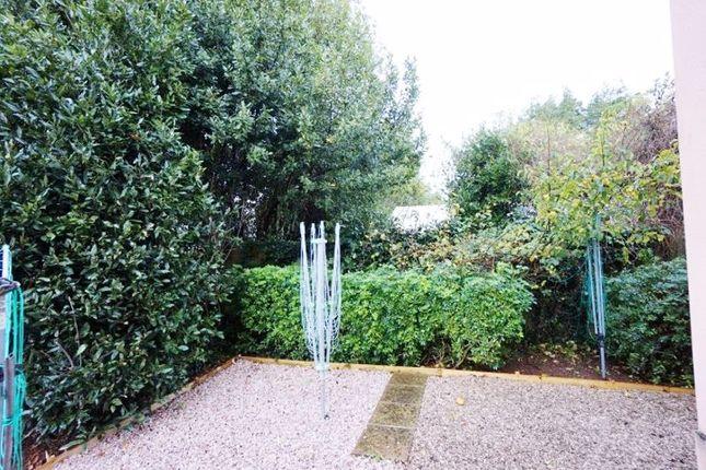 Garden of Glen Road, Paignton TQ3
