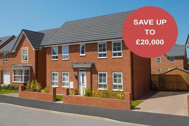 """Thumbnail Detached house for sale in """"Thornbury"""" at Tenth Avenue, Morpeth"""