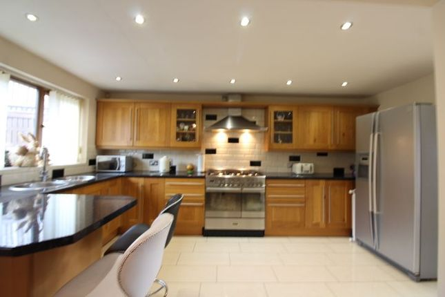 Thumbnail Detached house for sale in Arches Close, Dukestown, Tredegar