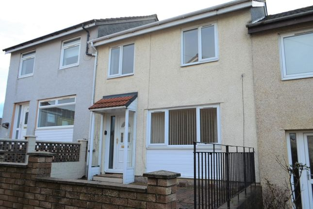 Thumbnail Terraced house to rent in Falkland Place, Stenhousemuir, Larbert
