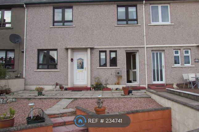 Thumbnail Terraced house to rent in Glenmoy Place, Arbroath