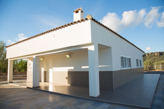 Finca for sale in Brand New Property With Vast Plot, Montserrat, Spain