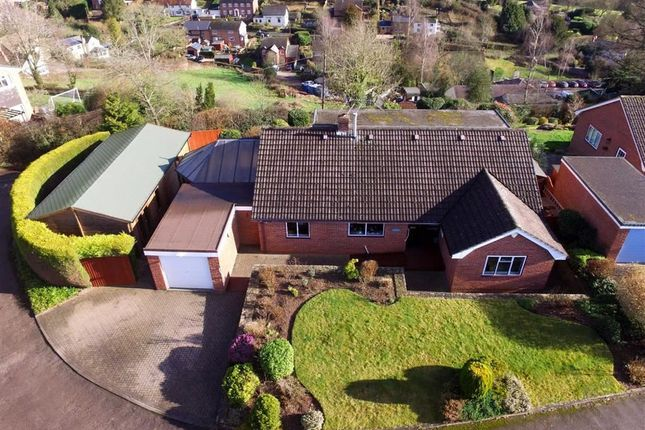Thumbnail Detached bungalow to rent in Wellington Heath, Ledbury, Herefordshire