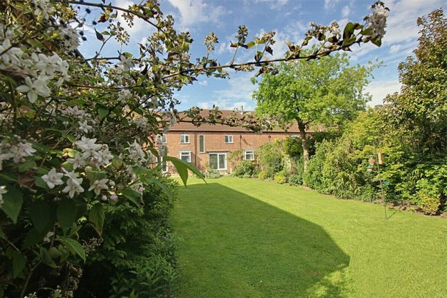 Thumbnail Link-detached house for sale in Manor Barn, Church Lane, Boughton