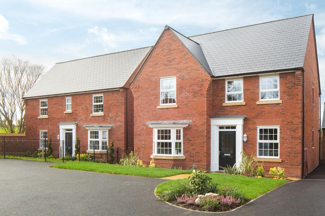 """Thumbnail Detached house for sale in """"Holden"""" at Cadhay, Ottery St. Mary"""