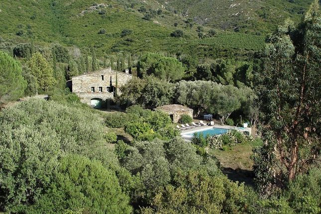 Thumbnail Property for sale in Saint-Florent, France