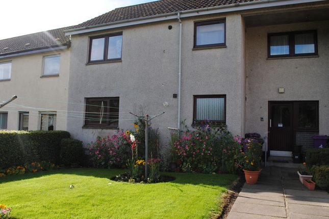 Thumbnail Flat to rent in Grange Road, Arbroath