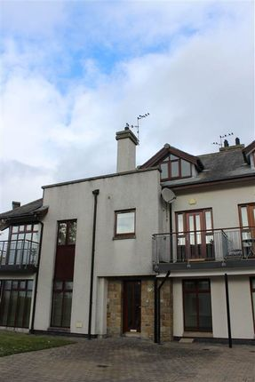 Thumbnail Town house for sale in Rosses Quay, Rostrevor
