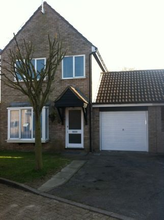 Thumbnail Link-detached house to rent in Colne Close, South Woodham Ferrers