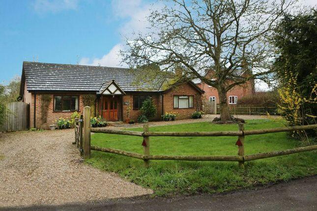 Thumbnail Detached bungalow for sale in Part Lane, Riseley, Reading
