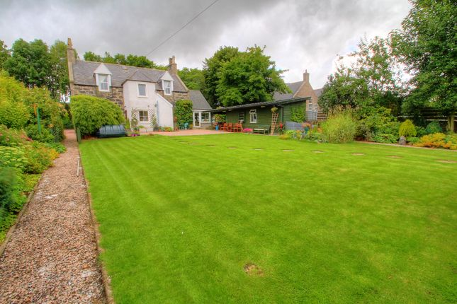 Garden View of The Avenue, Maud, Peterhead AB42